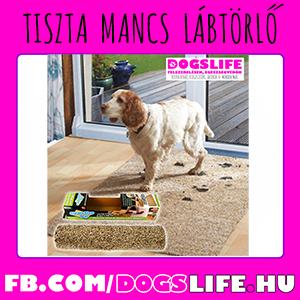 Kutyás Cuccok/Dogs Life Kutya Felszerelés és Egészségmegőrzés, Kutyás Ajándékok
