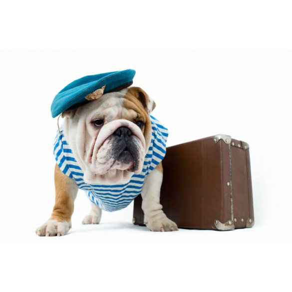 Bulldogos Bögre - Bulldog Travel grafikával