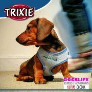 Trixie Puppy Soft Hám + Póráz Szett Light Mentol 26-34cm  - Puha, szivaccsal bélelt kellemes tapintású hám