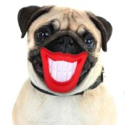 Dogs Life Dog Smiley Game - Játék egész nap