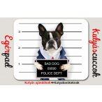 Bulldogos Egérpad - Francia Bulldog Bad Dog