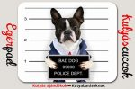 Bulldogos Egérpad - Francia Bulldog Bad Dog