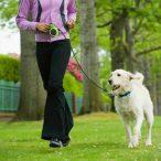 Dogs Life Flexi póráz 5 méteres - Kék   RAKTÁRRÓL!