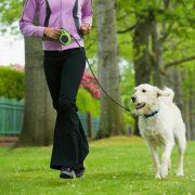 Dogs Life Flexi póráz 5 méteres