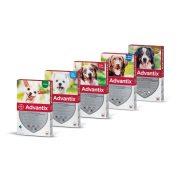 Advantix  spot on Kullancs, Bolha, Tetű, Légy és Lepkeszúnyog ellen - 4 kg alatti kutyáknak (1 x 0,4 ml) Ötszörös védelem