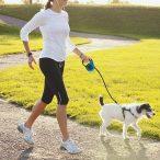 Dogs Life Flexi póráz 3 méteres  RAKTÁRRÓL!