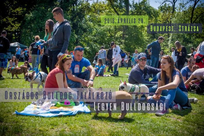 I. kerület - Budavár   Kössünk lányok találkozó, fonal simogató Budapesten