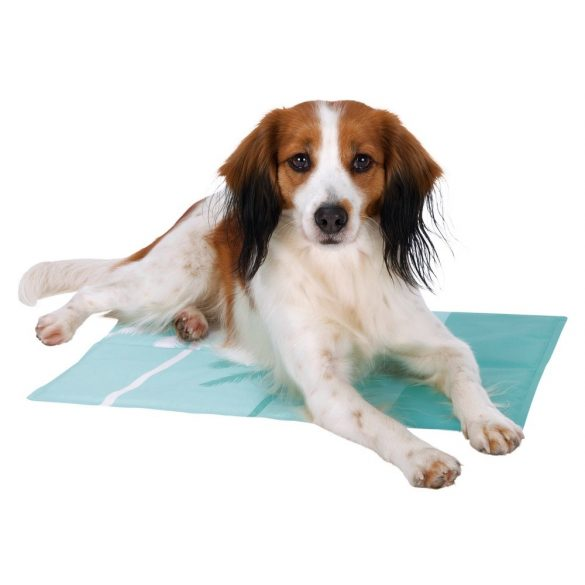 Trixie Hűsítő zselés matrac 40x50 cm-es Menta színes mintás (hűsítő matrac/hűtőmatrac/hűtőtakaró/hűtőpléd)