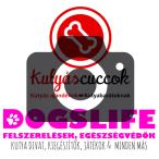 Mixnature Collars kendő kutyáknak +  Tanulj Kutyául! előadás jegy RAKTÁRRÓL!