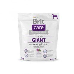 Brit Care Hypoallergenic Giant 1kg Gabonamentes Száraztáp Burgonyás-Lazacos Grain Free Salmon&Potato