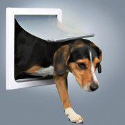 Trixie 2-Way Dog Flap kutyaajtó XS–S 20x21cm - 2 oldalra nyíló 2 funkcióval (mindkét oldalára nyílik, zárt állapot)