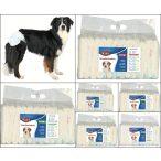 Trixie  Kutyapelenka nadrág 23636 XL 12db  Tüzelés esetén vagy idős kutyáknak inkontinentia ellen
