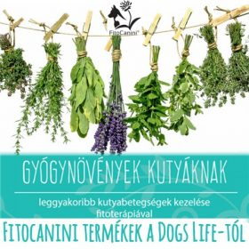 FitoCanini Gyógynövény keverékek