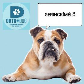 Orto Dog - Healthy Dog Kutya Gyógymatrac