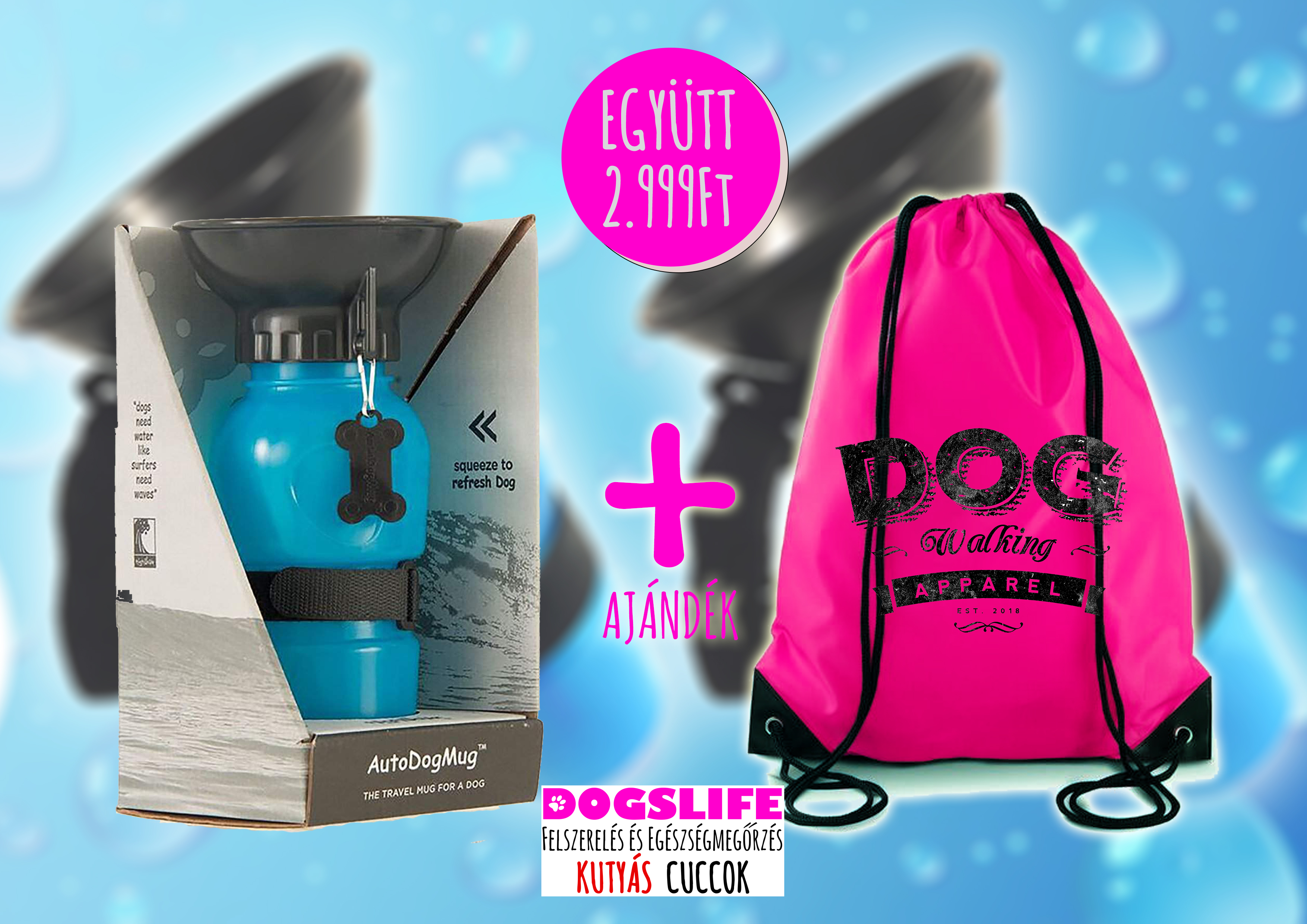 Aqua Dog Kulacs + Dogs Walking